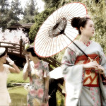 CHINA GEISHA CANCELED